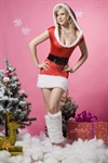 H:oter Women's Sexy Secret Santa Costume/Mrs Miss Christmas Santa Fancy Dress Costume Outfit