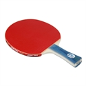 DHS X1002 (FL) New X-Series Recreational Table Tennis Racket