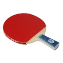 DHS X1006 (Penhold) New X-Series Recreational Table Tennis Racket