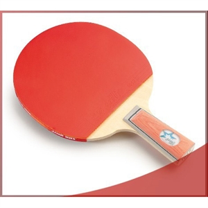 DHS X1007 (Penhold) New X-Series Recreational Table Tennis Racket