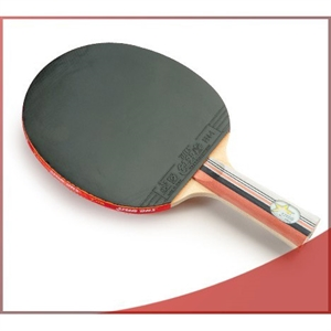DHS X2003 (FL) New X-Series Professional Table Tennis Racket
