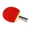 DHS X4006 (Penhold) New X-Series ALL-STAR Table Tennis Racket